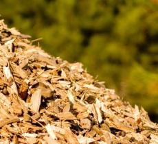 Componentes Sistemas Biomassa